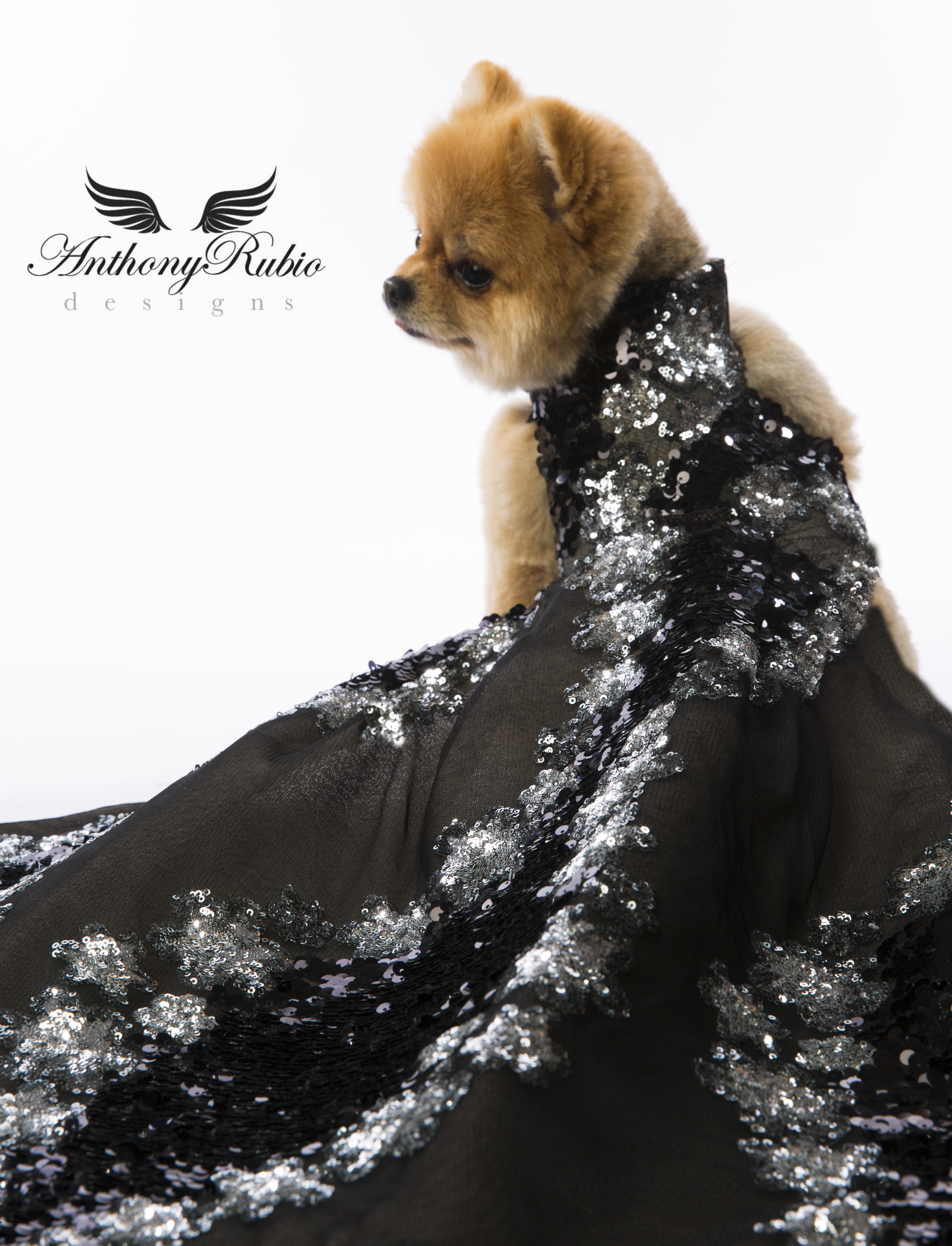 Canine Couture by Anthony Rubio - Silver and Black Sequined Gown for Dogs
