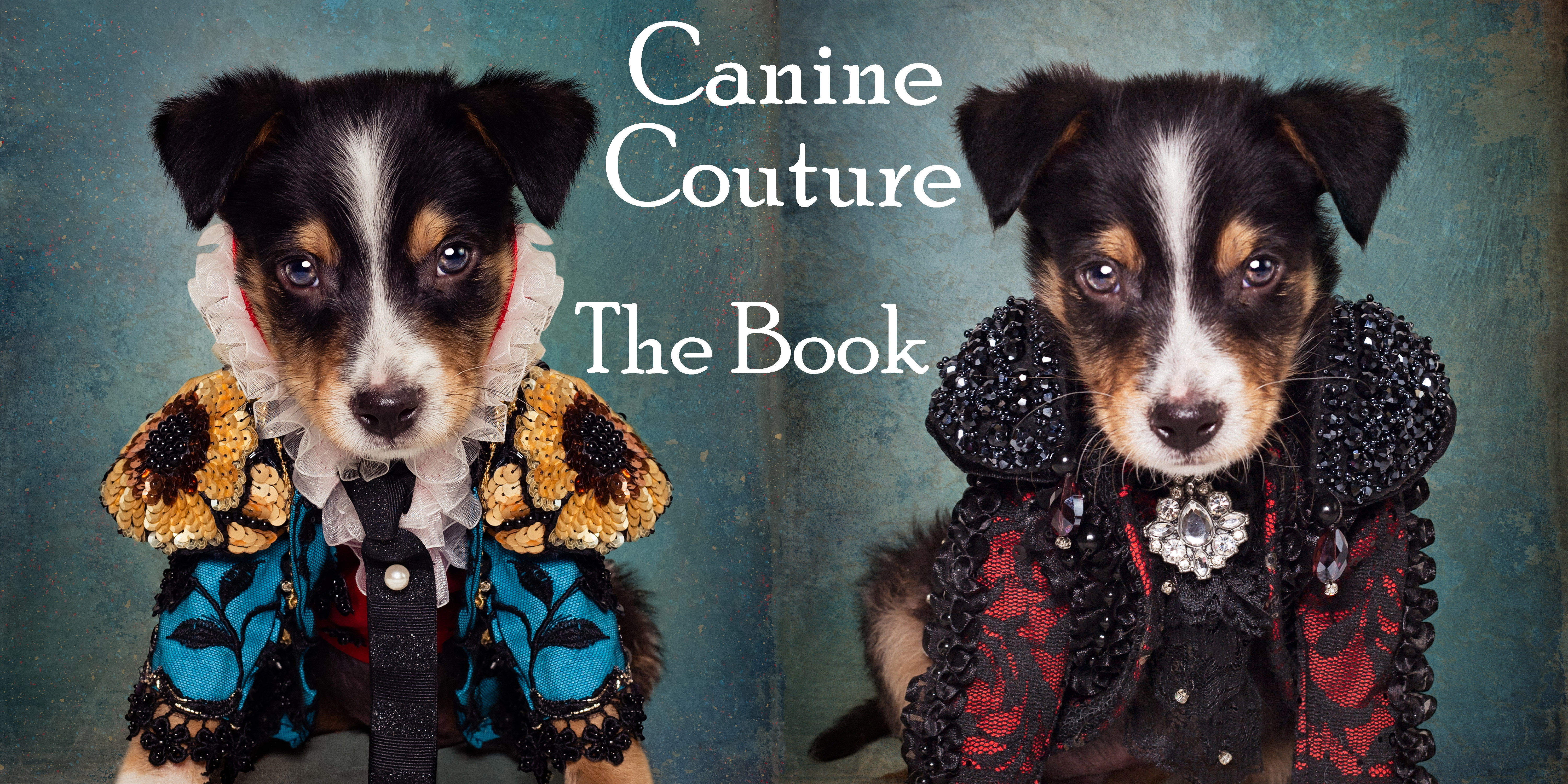 """Anthony Rubio """"Canine Couture"""" Coffee Table Book"""
