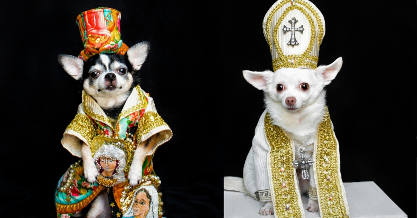08241dfe2f582 Dogs Wearing Outfits Inspired By Met Gala Heavenly Bodies Exhibit