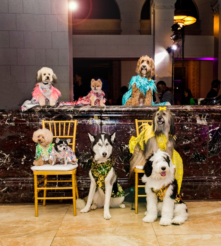 Anthony Rubio Women's Wear and Canine Couture Los Angeles Fashion Week Photo by SimplyRobb