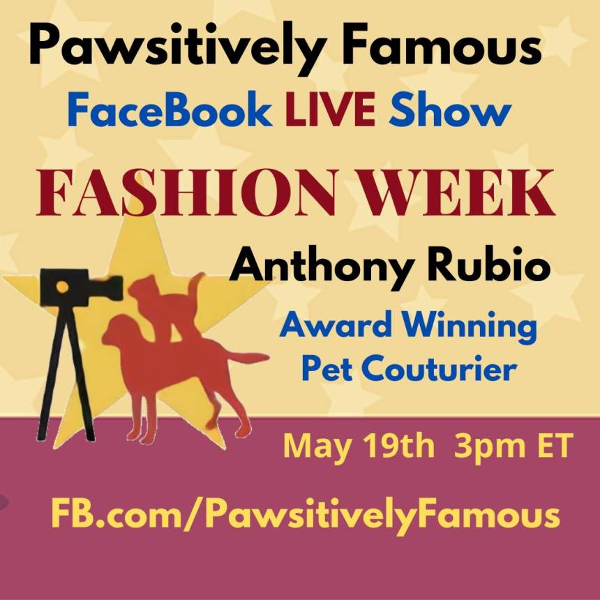 Anthony Rubio on Pawsitively Famous
